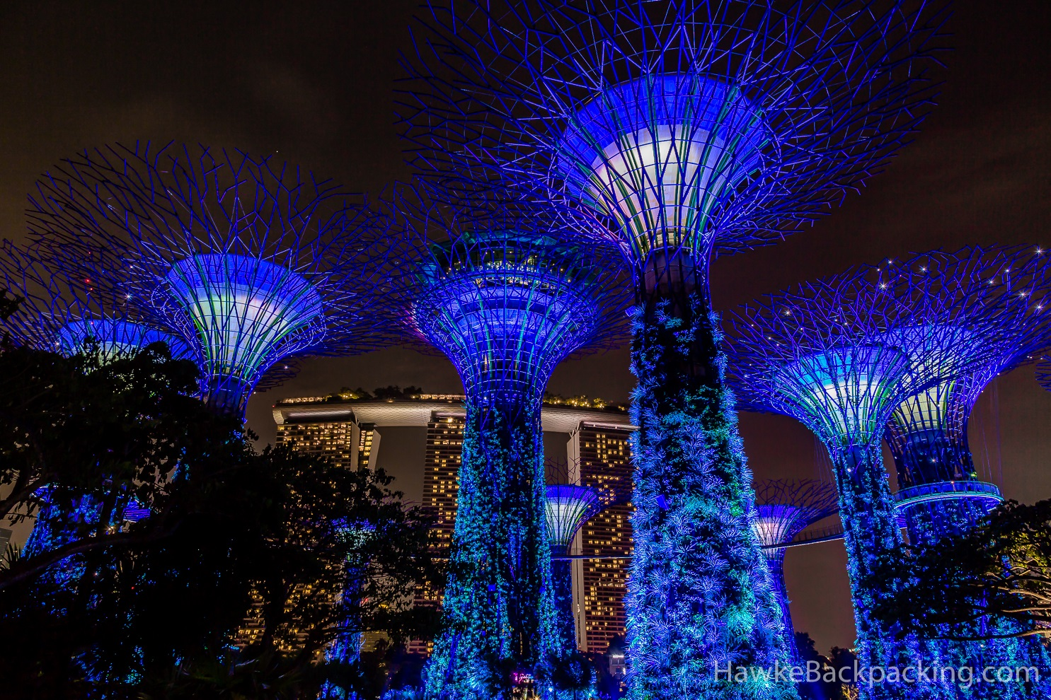 Garden By The Bay At Night singapore at night - hawkebackpacking